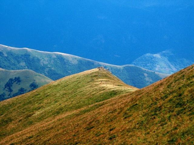 karpatsko balkanske planine Srbije