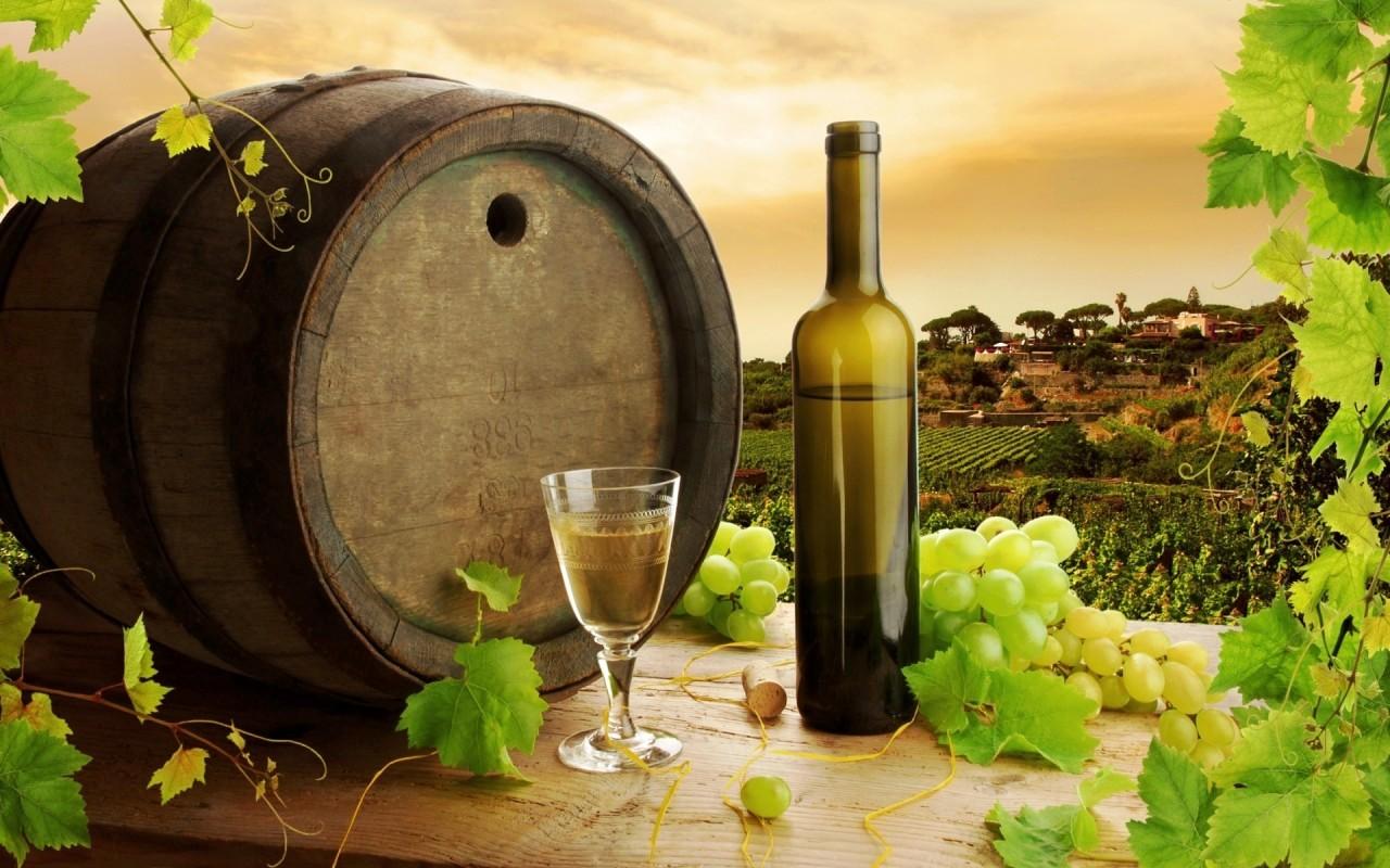 vinarije srbija