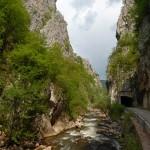 O Jermi – maloj i prkosnoj reci na Balkanu