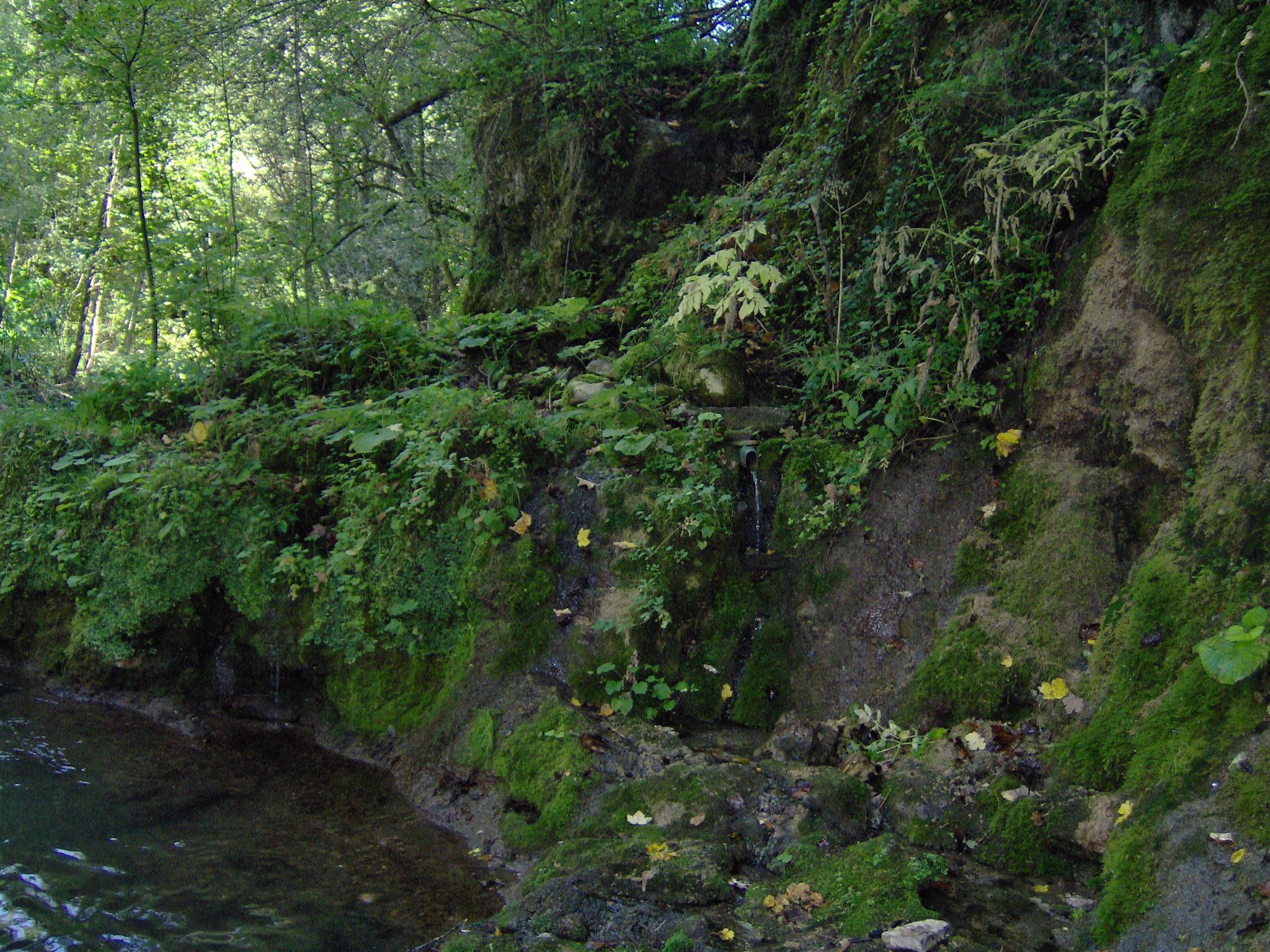 izvor vode