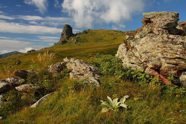 stara planina wellness spa