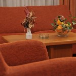 Hotel FONTANA – Bačka Palanka